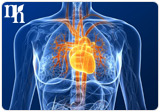 Bioidentical hormones may increase risk of heart disease or stroke