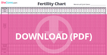 Download fertility chart pdf