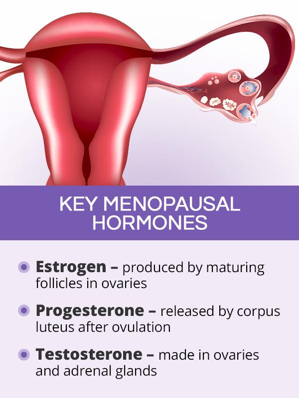 Key menopausal hormones