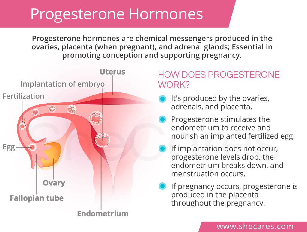 High Progesterone Levels Shecares Com