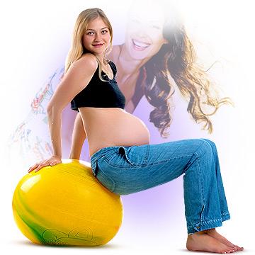 Estrogen Function