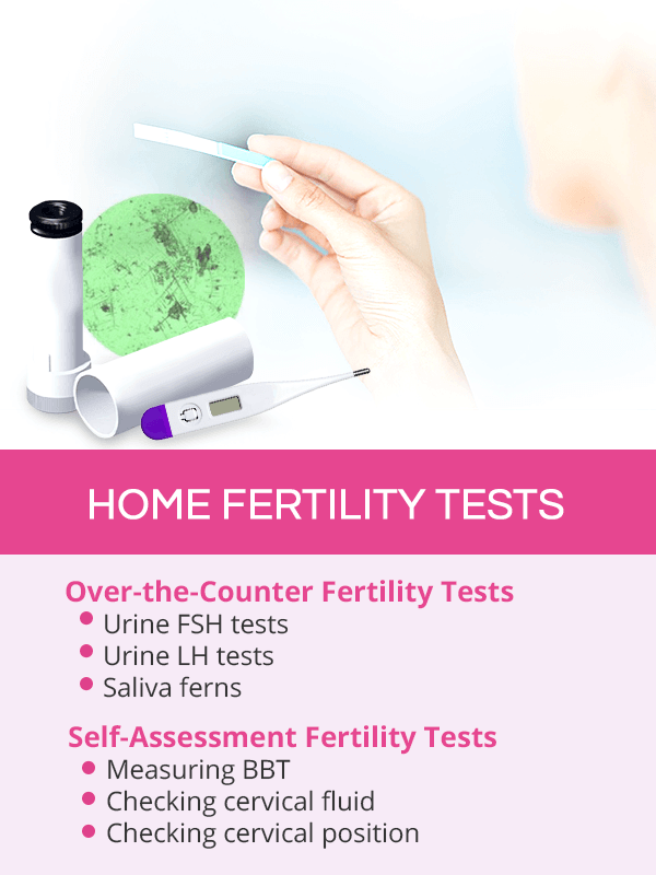 Home fertility tests