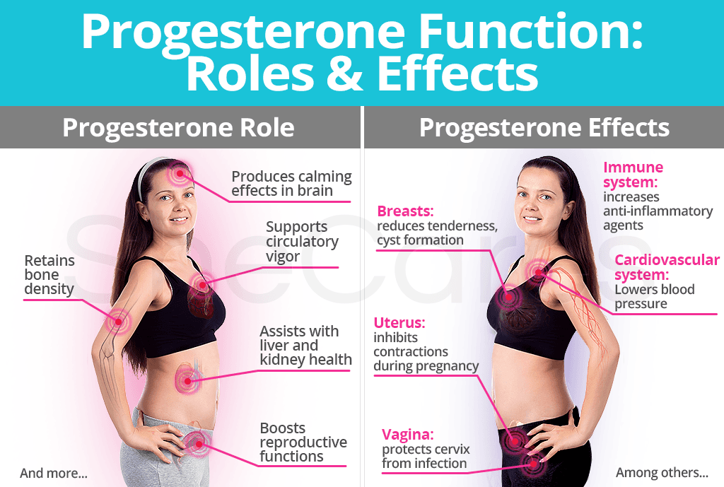 Progesterone Roles and Effects