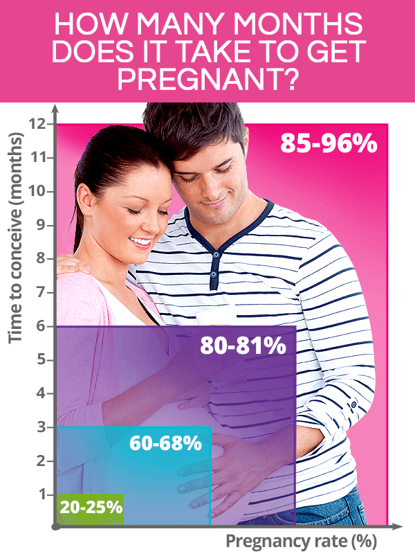 How many months does it take to get pregnant?