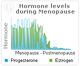 Progesterone and You: The Dangers of Progesterone Imbalance