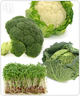 Broccoli, cauliflower, and cabbage are foods rich in indoles