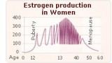 estrogen-puverty