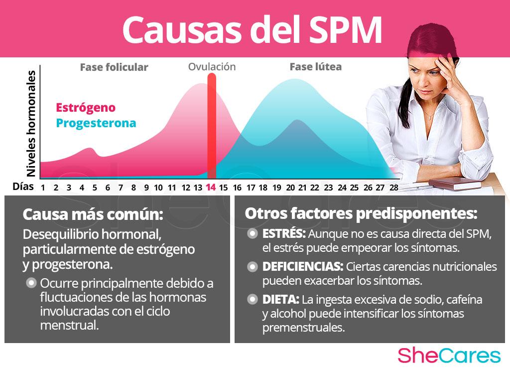 Causas del síndrome premenstrual - SPM