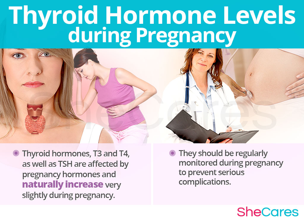 Thyroid Hormone Levels during Pregnancy