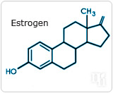 The Ins and Outs of Estrogen Production-1