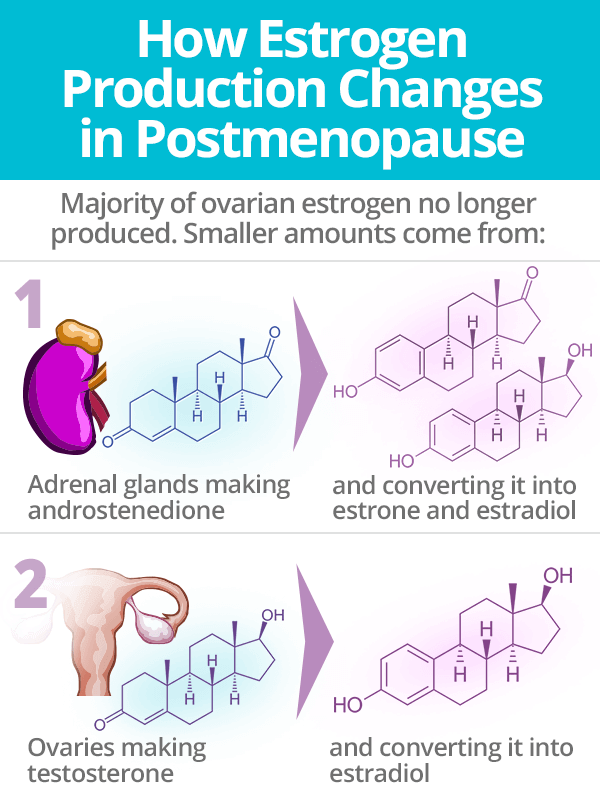 How Estrogen Production Changes in Postmenopause