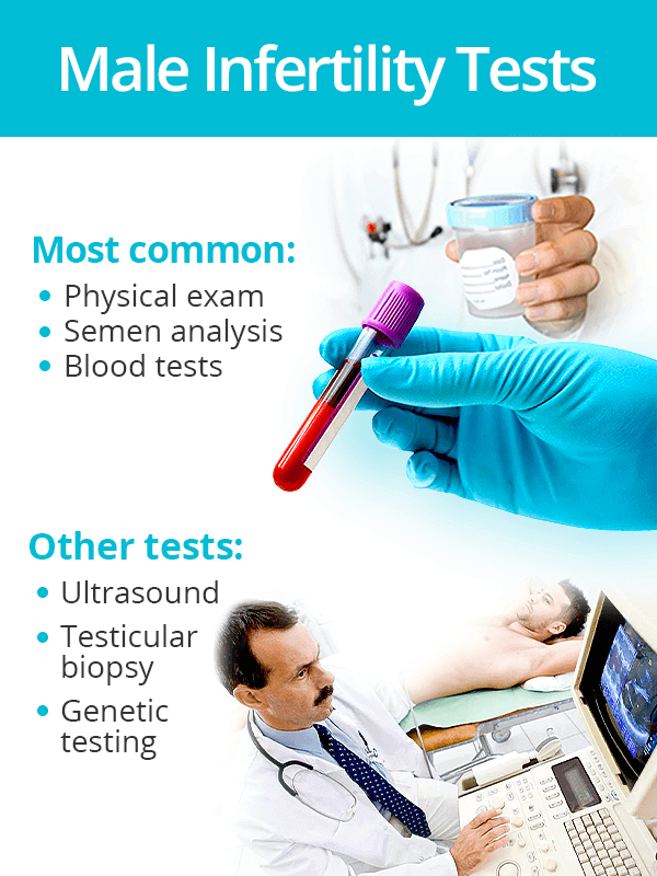 Male fertility tests
