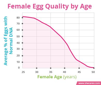 Egg quality age chart