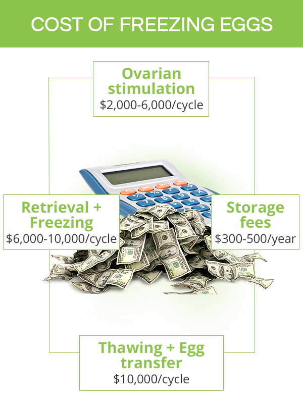 Egg freezing cost