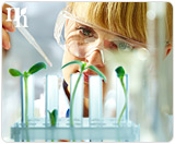 Bioidentical hormones are created in a laboratory from plant extracts.