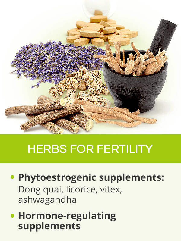 Herbs for fertility