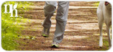 Walking can boost natural hormone production.