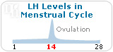 LH levels in menstrual cycle.