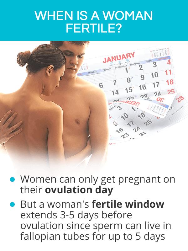 When is a Woman Fertile?