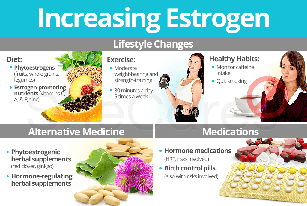 Increasing Estrogen Levels
