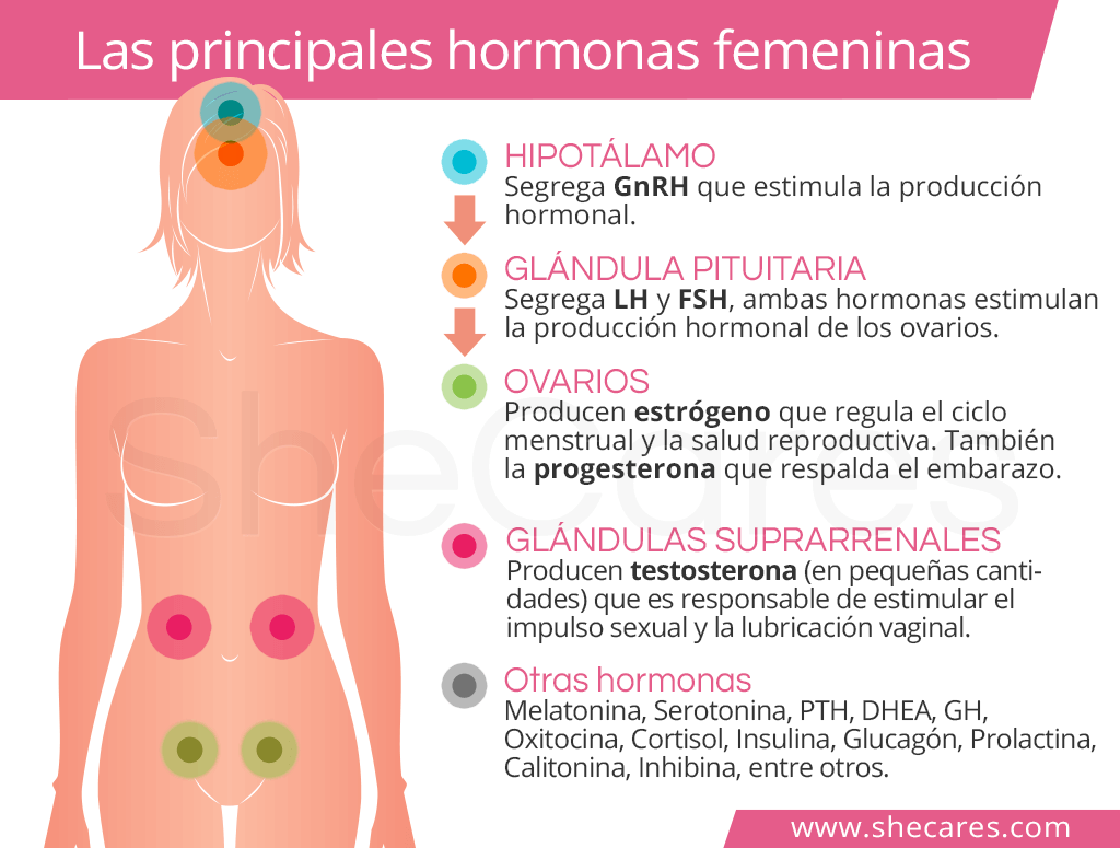 Hormonas naturales