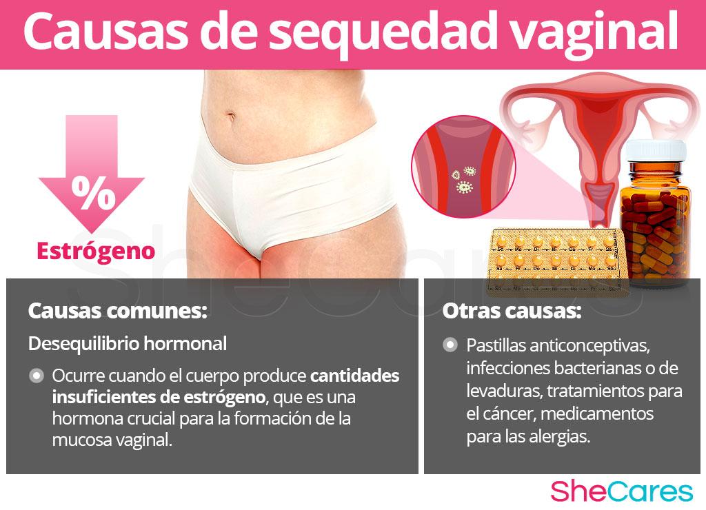 Causas de sequedad vaginal