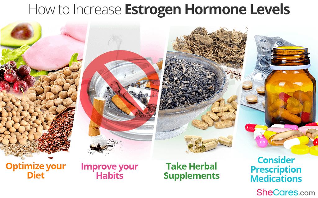 How to Increase Estrogen Hormone Levels