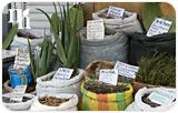 can-herbs-help-natural-hormone-imbalances-index