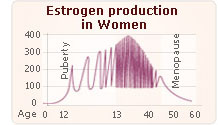 Normal Estrogen level