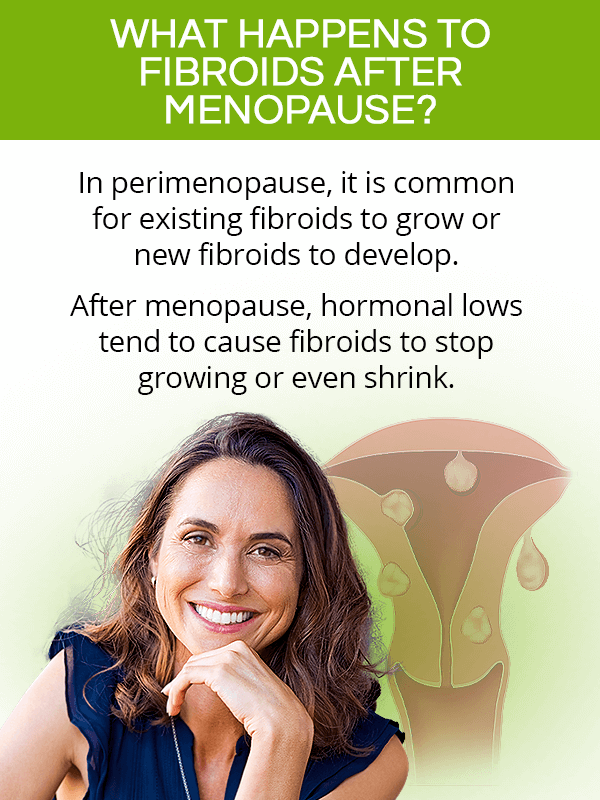 What happens to fibroids after menopause