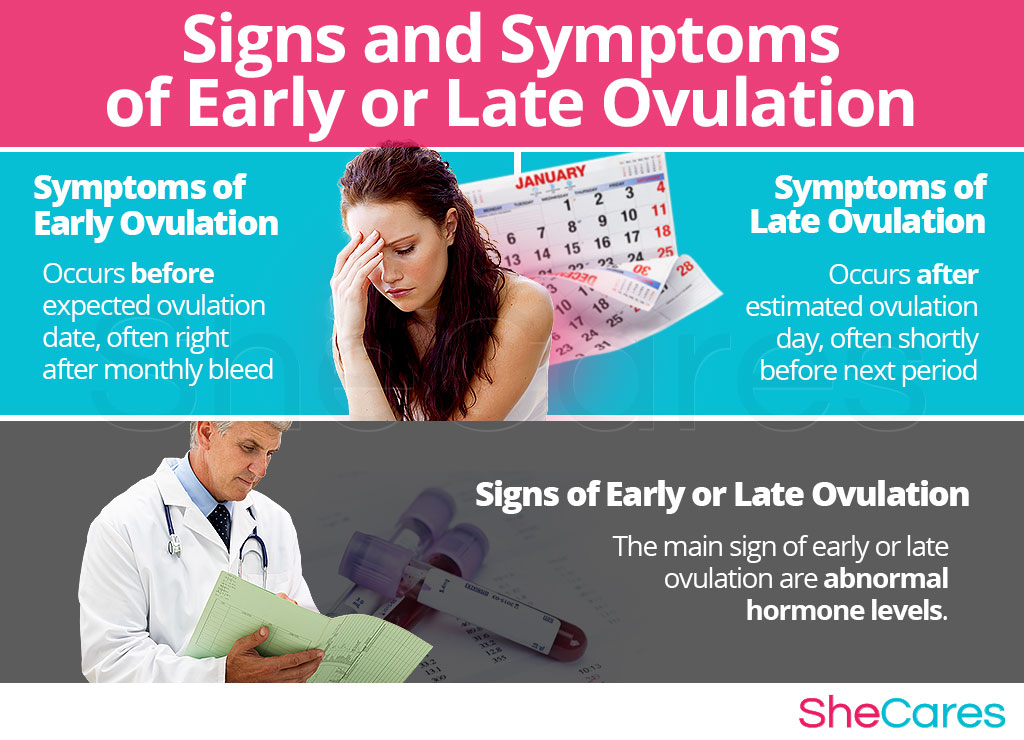 Early ovulation or late ovulation