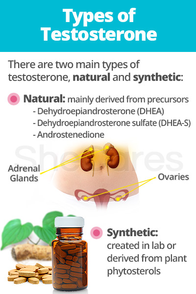 Types of testosterone