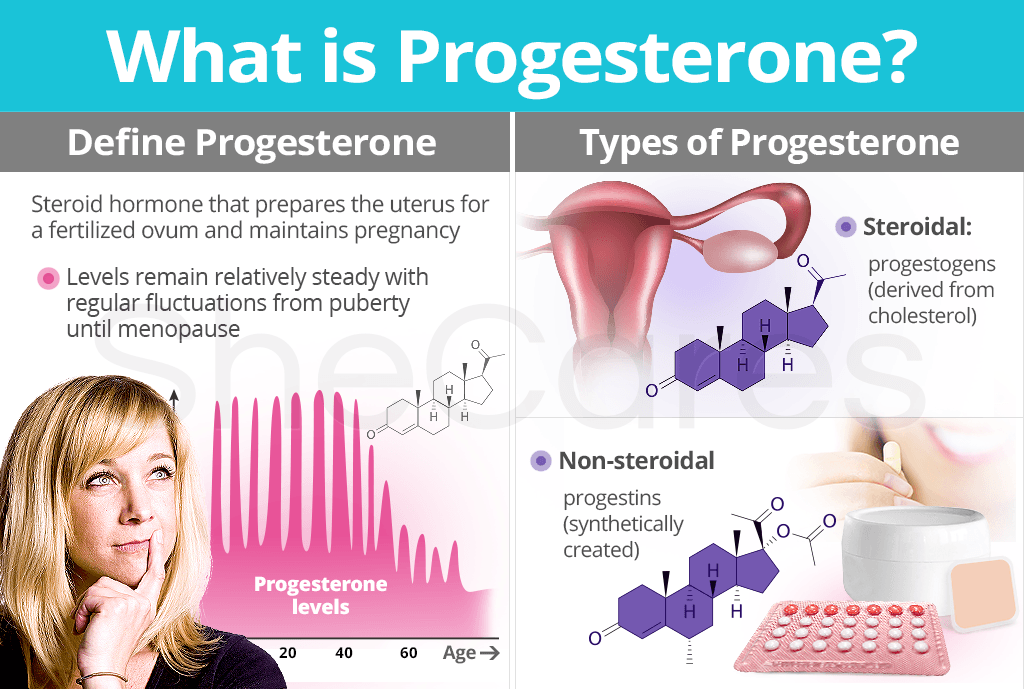 About Progesterone