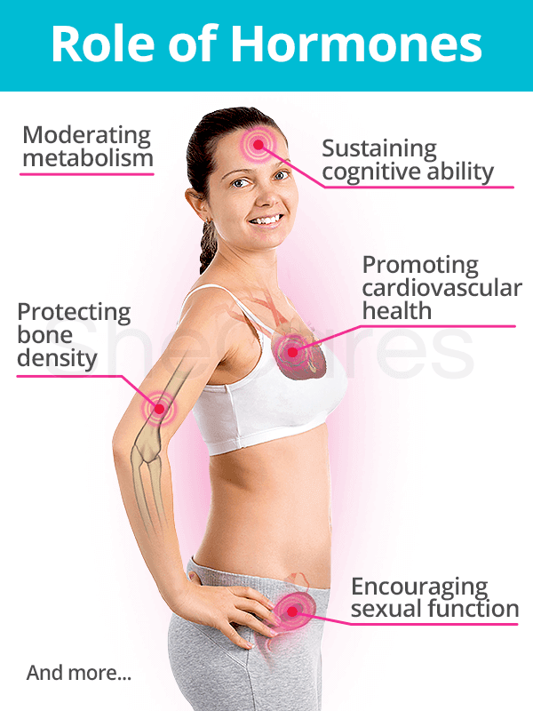 Roles of Hormones in the Body