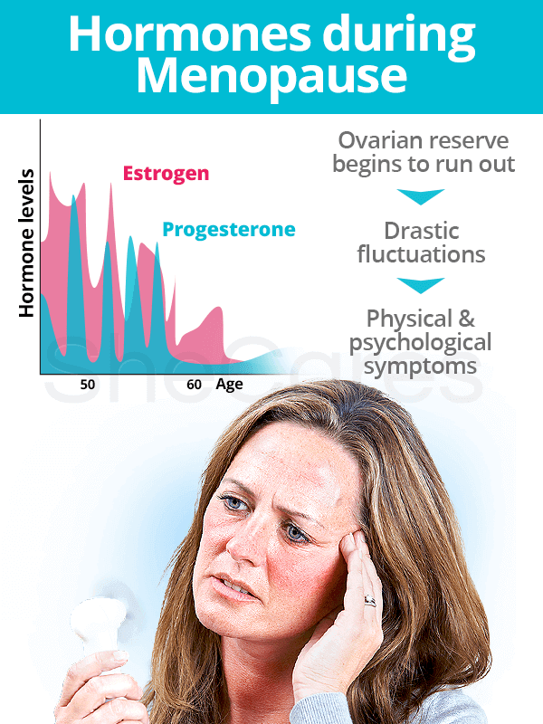Hormones during menopause