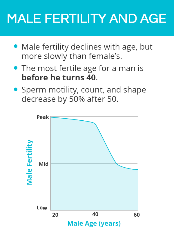Male fertility and age