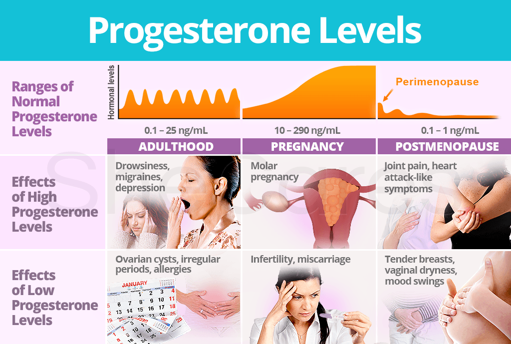 Progesterone Levels