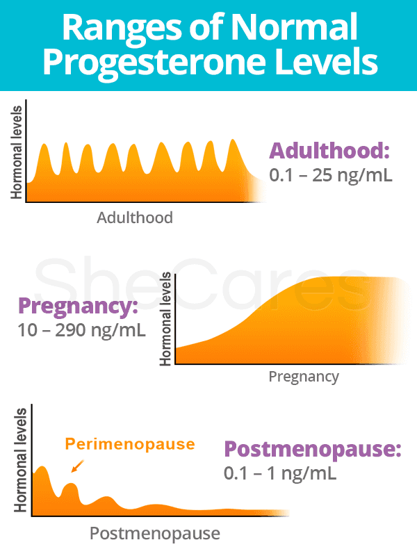 Normal Progesterone Levels