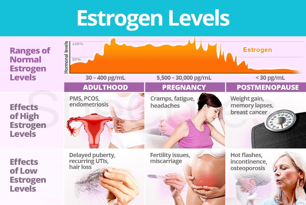Causes Of Low Estrogen Levels – Migliori Pagine da Colorare
