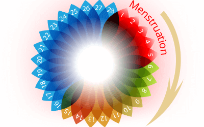 Healthy Menstrual Cycle