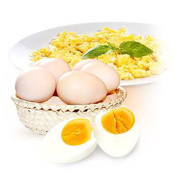 Eggs to get pregnant fast