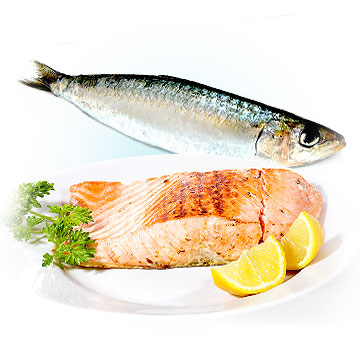Salmon to get pregnant faster