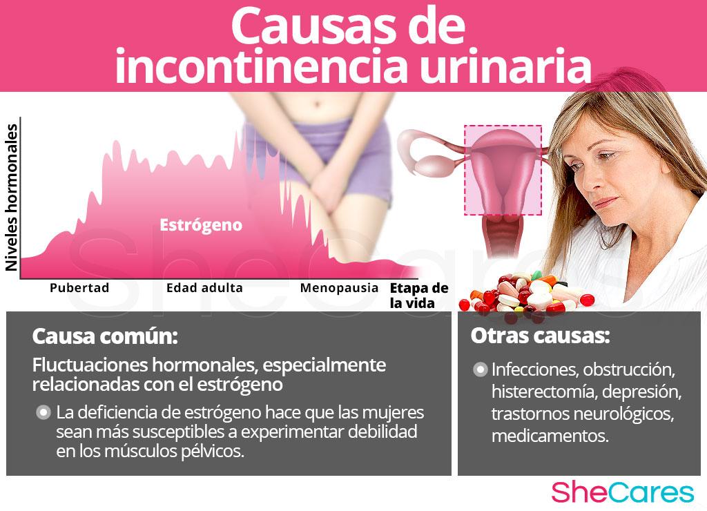 Causas de incontinencia urinaria
