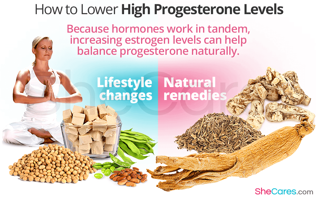 How to Deal With High Progesterone Levels
